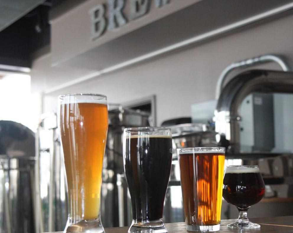 Shadow View Brewing | Cherry Tree Inn | The Groundhog Day House | IL